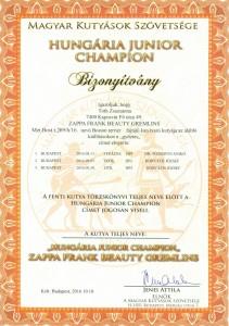 HJC Zappa Frank Beauty Gremlins bizonyítvány